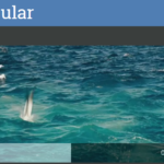 HTML5 Video Player para AngularJS – Videogular